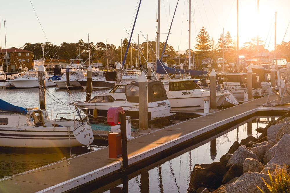 Large white and blue boats in marina in late afternoon sunshine.